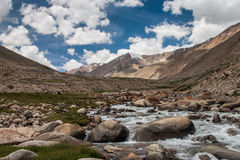 River in nubra valley Royalty Free Stock Photos