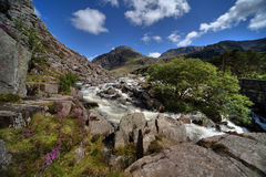 River Ogwen Royalty Free Stock Photography