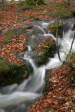 River Ogwen in full flood. Flowing through to Bethesda in Snowdonia Wales Royalty Free Stock Images