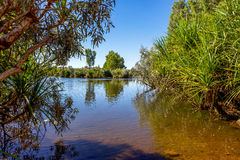 River in outback Australia. Stock Image