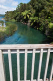River outlet from Lake Tarawera Stock Photography