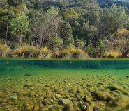 River over and under water surface Catalonia Spain. River over and under water surface, vegetation with pebbles underwater, La Muga near Albanya, Girona, Alt Royalty Free Stock Photo