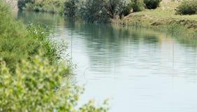 River overgrown Royalty Free Stock Photos