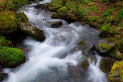 River Oza Stock Photos