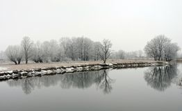 River and snowy winter trees, Lithuania Royalty Free Stock Image