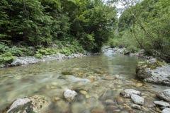 River panorama Stock Photography