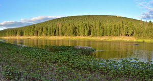 River panorama in the national Park Royalty Free Stock Images