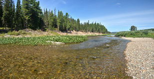 River panorama in the national Park Royalty Free Stock Photo