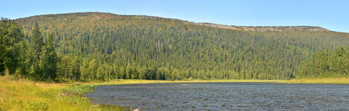 River panorama in the national Park Stock Photos