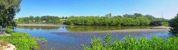 River panoramic in Florida  Royalty Free Stock Images