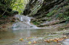 River in the Park of Casentino Forests Italy Stock Image