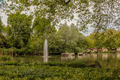 River and park. 2017 England, London in park Royalty Free Stock Photos