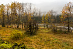 River park in fall Royalty Free Stock Photo