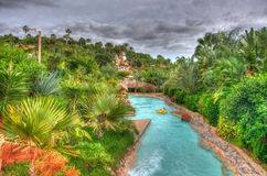 River in the park with palms, Tenerife, Canarian Islands Stock Photos