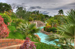 River in the park with palms, Tenerife, Canarian Islands Royalty Free Stock Images