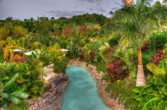 River in the park with palms, Tenerife, Canarian Islands Stock Image
