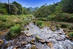 The river in park Soroa. Cuba. Royalty Free Stock Photos
