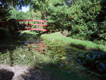 River in park with trees and flowers. Park with river, beautiful trees, flowers and bridge in Hortulus Gardens, Dobrzyca, Poland Stock Image