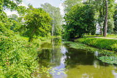 River in the park Stock Photography
