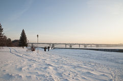 River park at winter time Stock Photography