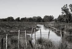 The river. A peaceful and isolated landscape Stock Image