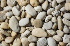 River pebble Stock Photography