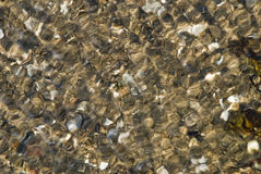 River pebbles in flowing water Royalty Free Stock Image