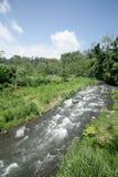 River photo, Bali Island, Indonesia Royalty Free Stock Photos