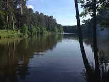 River. Picturesque forest and the river Royalty Free Stock Photo