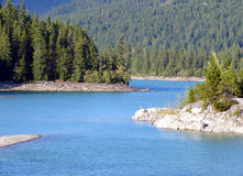 River, pine. Landscapes stock images