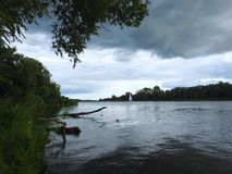 River, plants and cloudy sky, Lithuania Stock Photos