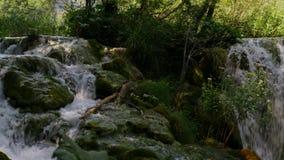 River in Plitvice Lakes National Park.  stock video
