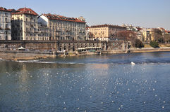 River Po in Turin, Italy Royalty Free Stock Photography
