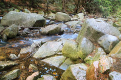 River in the Polish forest. Mountain rocks covered with moss Stock Images