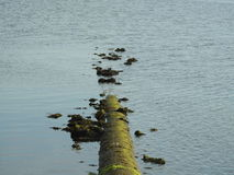 River pollution. Sewage from the power plant pollutes a river and lake Stock Image