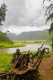 Pololu Valley, Big Island, Hawaii Stock Photography