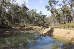 River Pool at Crooked Brook Western Australia in winter. Royalty Free Stock Photography