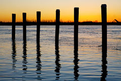 River Posts at Sunset. Pilings on the Mississippi River at Sunset Stock Images