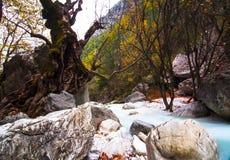 River of Pozar at Aridaia. In north Greece stock photos