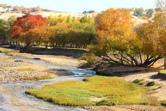 River in prairie. River in the mongolia prairie in china stock images