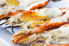 River prawn grill on white dish Royalty Free Stock Photography