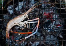 River prawn grilled Royalty Free Stock Photo