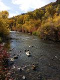 River. Provo river fall royalty free stock photos