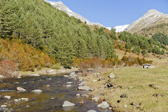 River in the Pyrenees Royalty Free Stock Image