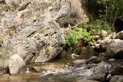River in Pyrenees orientales, France Stock Image