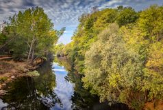 The river with a quiet current Stock Photography