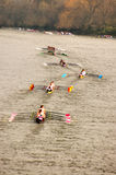 River Race Stock Images
