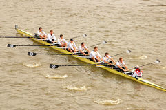 River Race Royalty Free Stock Images