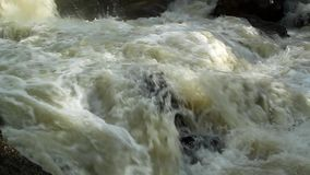 The river, a raging torrent flowing among rocks Stock Photography