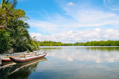 River, rainforest and boats Stock Image